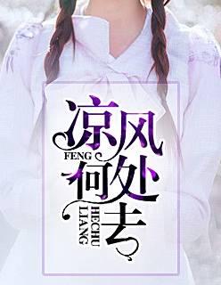热门小说《凉风何处去》在线免费阅读全文