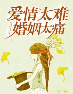 短篇小说《爱情太难,婚姻太痛》最新章节在线免费阅读全文