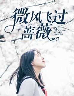 言情小说《微风飞过蔷薇》完整版在线免费阅读全文