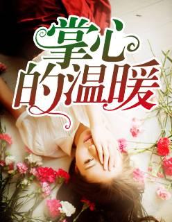 言情小说《掌心的温暖》全文免费阅读