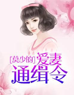 沈南乔莫北丞小说《莫少的爱妻通缉令》全文在线免费阅读