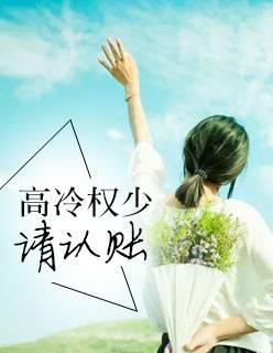 安乐王小说