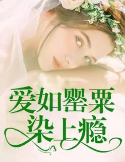 芳福利小说
