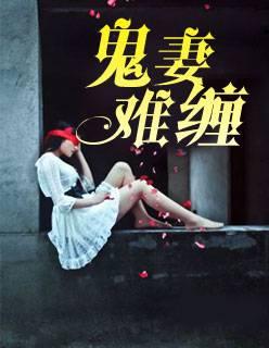 叶知秋主角小说