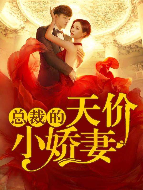 小说《总裁的天价小娇妻》全文在线免费阅读