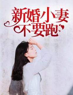 群侠传小说