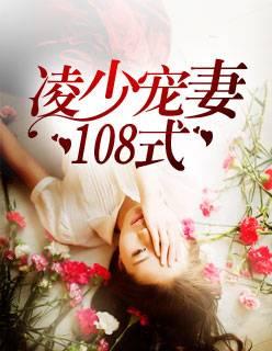 凌少宠妻108式