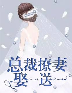 《总裁撩妻,娶一送一》主角沈砚芯顾庭渊章节列表完整版