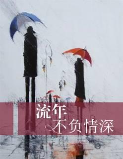 《流年不负情深》小说TXT全文免费阅读