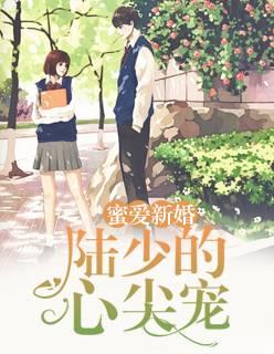 【蜜爱新婚:陆少的心尖宠完本最新章节完结版】主角莫暖陆太太
