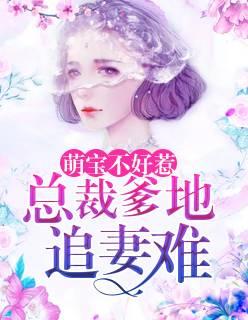 《萌宝不好惹:总裁爹地追妻难》(叶维陆先生小说)无弹窗在线阅读