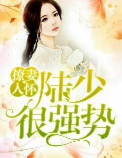 《撩妻入怀:陆少很强势》(景宁陆景深小说)无弹窗在线阅读