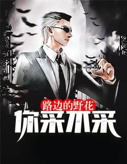 《路边的野花你采不采》主角王叶勇浩精彩章节小说章节列表