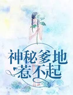 《神秘爹地惹不起》(萧玖陆亦臣小说)无弹窗在线阅读