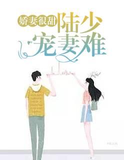 《娇妻很甜:陆少宠妻难》(景宁陆景深小说)无弹窗在线阅读