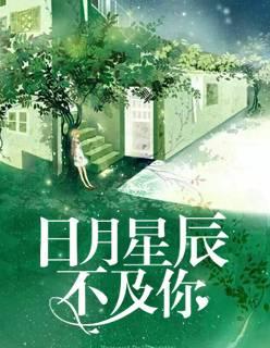 《日月星辰不及你》小说全章节免费阅读