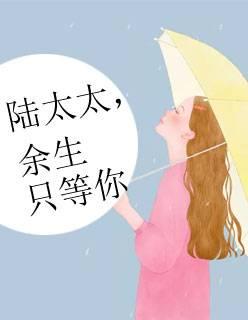 《陆太太,余生只等你》(顾兮辞陆聿臻小说)无弹窗在线阅读