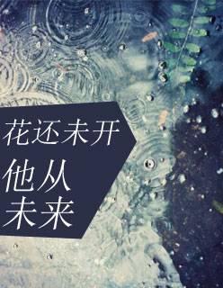 《花还未开,他从未来》(叶兆琛罗依茗小说)无弹窗在线阅读