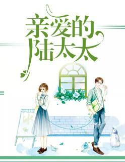 总裁豪门《亲爱的陆太太》全文无删减版在线免费阅读