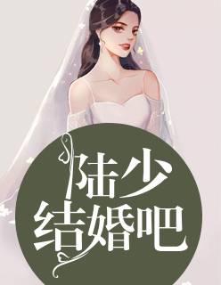 陆少,结婚吧!