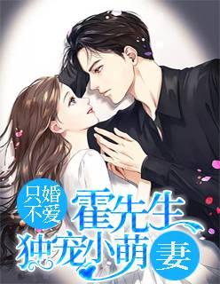 《只婚不爱:霍先生独宠小萌妻》总裁豪门短篇小说甜文在线免费阅读无广告无弹窗
