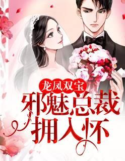 《龙凤双宝:邪魅总裁拥入怀》在线阅读免费无广告