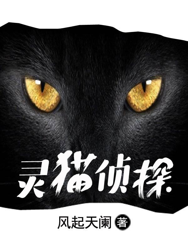 【灵猫侦探精彩阅读无弹窗】主角王老板安静