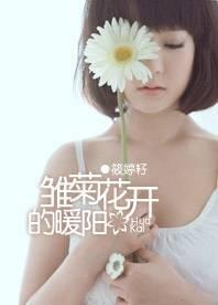 雏菊花开的暖阳