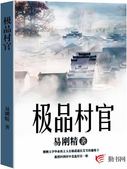 【极品村官小说免费阅读】主角杨袁凤英