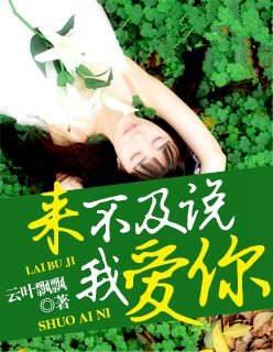 来不及说我爱你(主角蓝裴琳慕瑾谦)免费试读小说