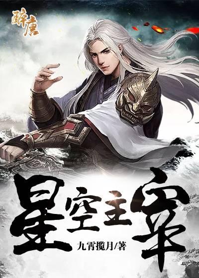 赵星辰小说