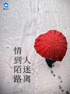 《情到陌路人迷离》(主角乔洛秦少延)章节列表免费阅读全文试读