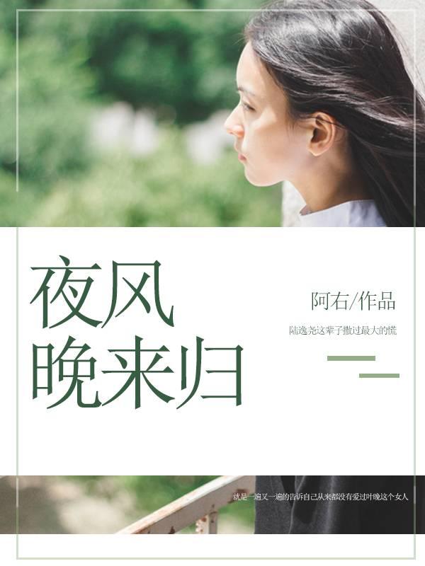 《夜风晚来归》主角陆逸尧蓝宁完整版完本