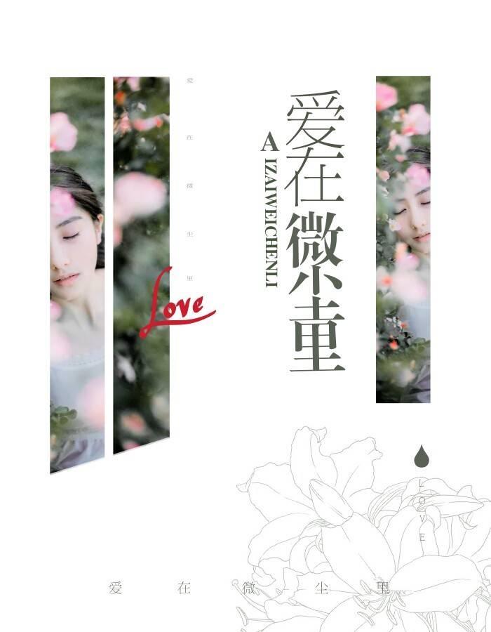 【爱在微尘里完本完结版】主角苏浅语宋思琪