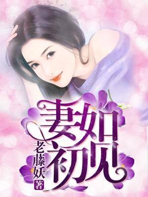 《妻如初见》主角宋以沫赵陆完整版章节目录免费阅读