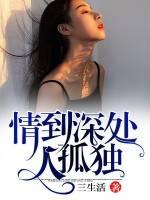 《情到深处人孤独》小说全章节免费阅读