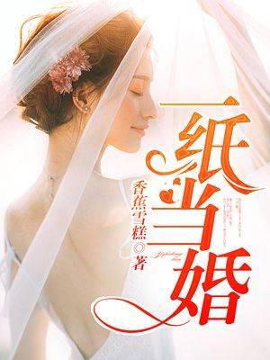 小说《一纸当婚》完整版