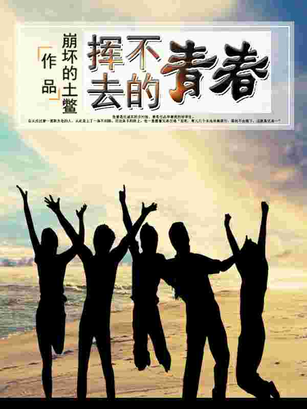 《挥不去的青春》(主角孙林邓健)在线试读完结版完本