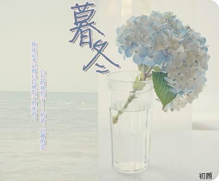 《暮冬》主角容颜夏晓星章节列表章节目录