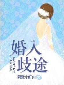 《婚入歧途》总裁豪门短篇小说甜文在线免费阅读无广告无弹窗