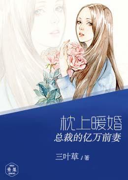 《枕上暖婚:总裁的亿万前妻》主角贝明娜谢明精彩试读无弹窗