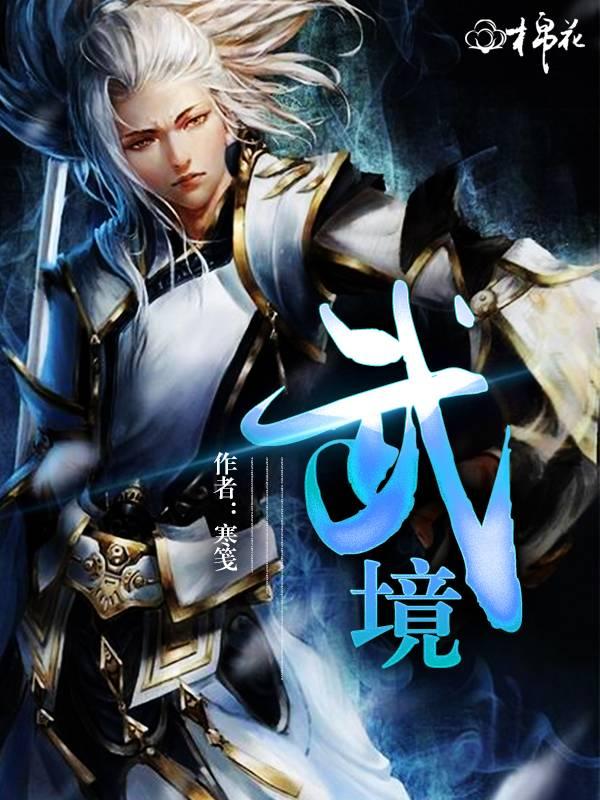 【武境全文试读无弹窗】主角宝剑蓝灵冰