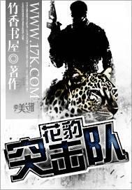 都市异能小说《花豹突击队》全文在线免费阅读