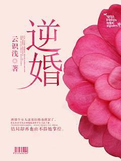 逆婚主角叶梁遇大结局免费试读精彩阅读